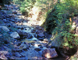 Grider Creek In Marble Mountains