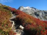Sahale Glacier In Backdrop,,, My Goal