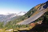 Trail West Of Cascade Pass