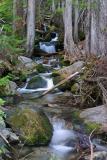 Silver Falls Creek.
