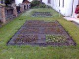 Mendel's garden in Brno