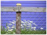 leadville colorado fence