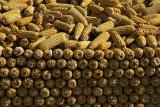Stockpiled corn cobs