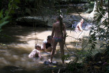 Rock pool in the Buderim Forest Park