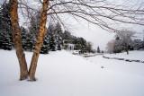 Winter, 2007-2008