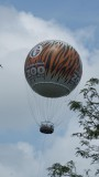 Channel 6 Philly -Zoo balloon