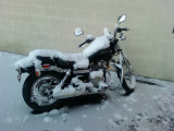 Rebel without a ...(snowcover)