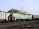 CRDX 12037.JPG