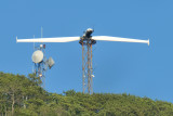Wind Turbine Test - Sigma 18-200 @ 400mm.JPG
