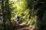 6 km hike into the Coromandel National Park