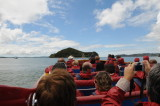 Fast boat out to the Hole in the Rock, Bay of Islands