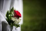John and Monica - Wedding