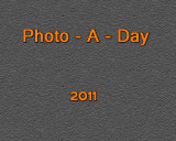 Photo A Day 2011