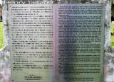 IMG_0087 copy.jpg