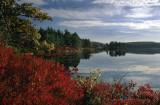 Witch's Pond