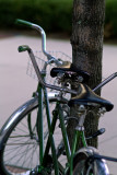Locked Bikes