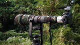 MY HD VIDEO RIG VISITS SUBIC RAINFOREST. I snap a shot of my bird filming rig during a lull in birding at Subic rainforest.  The rig consists of a Canon 5DM2, Sigmonster (Sigma 300-800 DG), Canon 2x TC, Sennheiser MKE 400 mini-shotgun mic,  Manfrotto 475B tripod + 3421 gimbal head, and Sandisk Extreme III 16 GB (30 Mbps) CF cards.  [20D + Sigma 10-20, hand held]