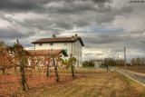 Modena country side