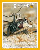 cover_154.jpg