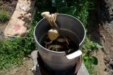 Bath Hot Springs Crab Feast