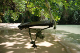 Frenchman's Cove Swing
