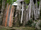 Roaring River Fence