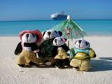 The Pandafords at Half Moon Cay
