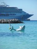 Carnival Destiny with Shark at Half Moon Cay