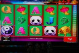Panda Penny Slot Machine