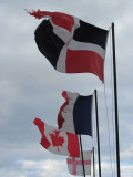 Visitor's Flags