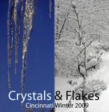 Crystals & Flakes: Winter '09 in Cincinnati