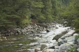 Looking upstream, we saw a foot bridge...