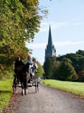 Killarney National Park Jaunting Cart