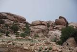 22 - Al-Shafa Valley Shobaat - May 08.jpg