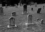 OLD GRAVE MARKERS - ISO 100