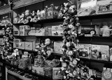 TOYS IN THE MAST GENERAL STORE - HENDERSONVILLE, NORTH CAROLINA