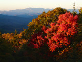 EVENING GLOW ON THE BLUE RIDGE PARKWAY