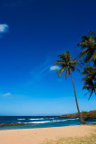 L49 Salt Pond Beach (Kauai)