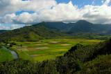 L51 Hanalei Mountains (Kauai)