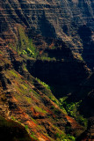 L53 Canyon Walls (Kauai)