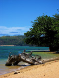 L56 'Anini Beach (Kauai)