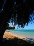 L57 Paradise (Kauai)