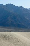 L28 Dune Wanderer (Death Valley)