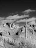 L7 Tucson Mountains (Tucson)