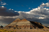 The Painted Desert and the Petrified Forest National Parks - 2009