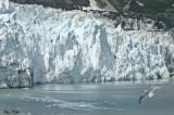 Alaska: Inside Passage 2010
