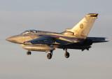 TornadoF3_ZE342_ADX.jpg
