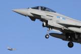 TyphoonFGR4_ZK310_ADX.jpg