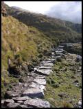 Inca Rivers - Pajonal Victoria to Aguas Callientes