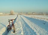 Chemin du travail ce matin... (Evere, champs derrière l'OTAN)
